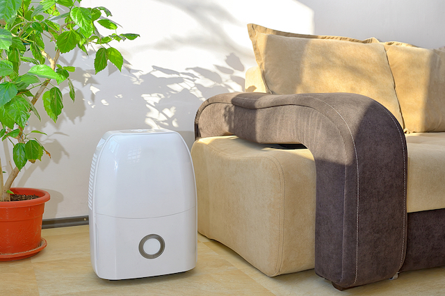A white portable dehumidifier sits on a tan floor in front of a white wall. To the left of the dehumidifier is a houseplant in an orange pot. To the right, a tan and brown couch.
